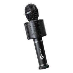 N-Gear Sing Mic S10